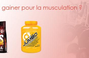 meilleur gainer musculation