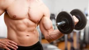 tribulus pour la musculation