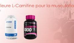 meilleure l carnitine musculation