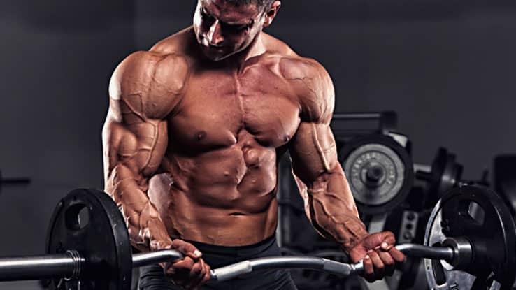 bonne vascularité musculation