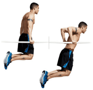 musculation dips