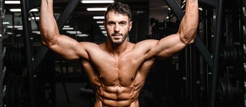programme musculation confirmé
