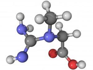 molécule créatine