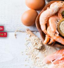 Quels sont les aliments les plus riches en protéine