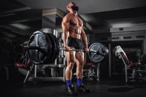 exercice polyarticulaire de musculation