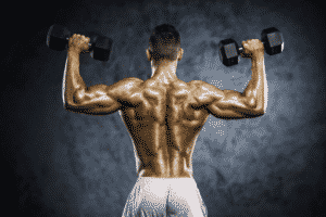 isolation musculation