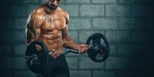 musculation exercice d'isolation