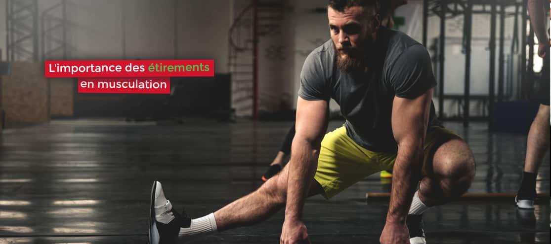 l'importance des étirements en musculation