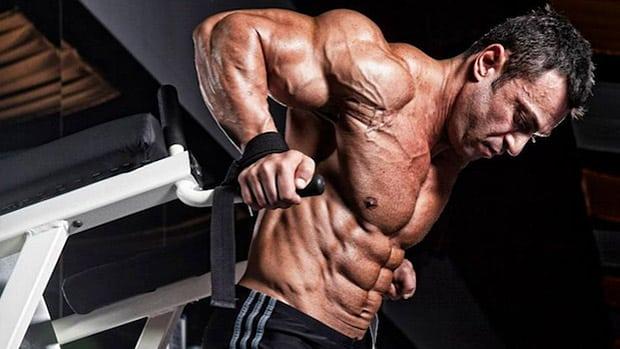 entrainement split musculation