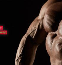 comment se muscler les pectoraux sans matériel
