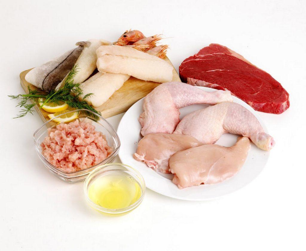 aliments anti catabolique