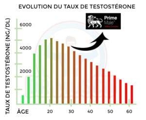 augmentation taux testostérone prime male