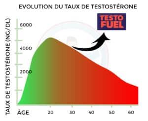 augmentation taux testostérone testofuel