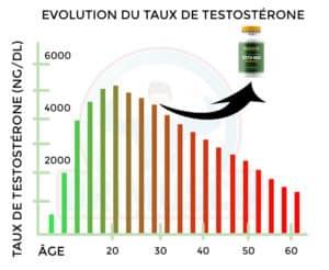 évolution augmentation et baisse taux testostérone testo-max