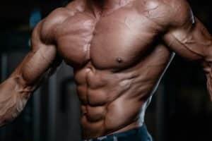 prise de muscle testo-max