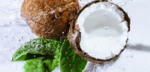 extrait d'eau de coco