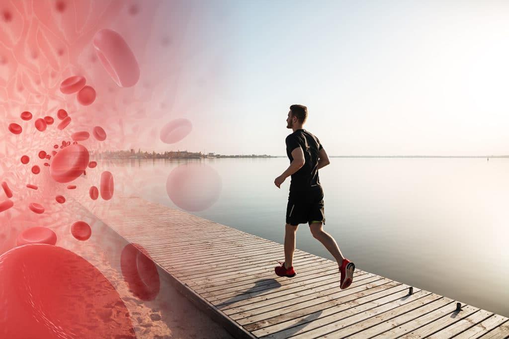 sport et oxyde nitrique