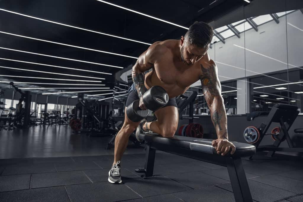 limite progression musculation