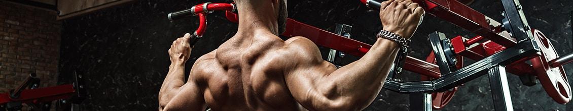 importance de suivre un programme de musculation